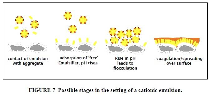 Possible stages in the setting of a cationic emulsion